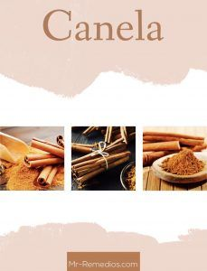 canela beneficios